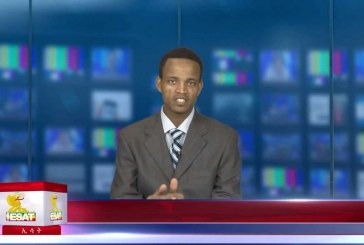 ESAT Daily Ethiopian News DC July 29, 2013