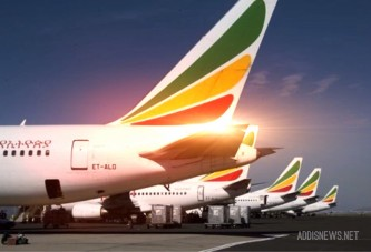 Ethiopian Airlines eyes African aviation liberalisation in 2015
