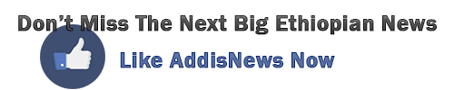 addisnews-like
