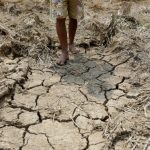 Ethiopia's drought has left 7.7 million people hungry