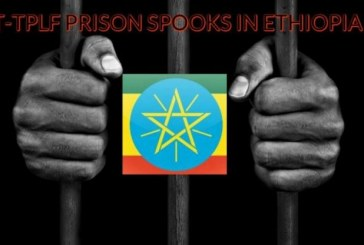 The T-TPLF Spook That Sat by the Jailhouse Door in Ethiopia (Part I)