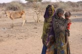 Drought Highlights the Plight of Ethiopia's Internally Displaced