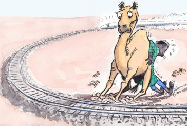 Camel trains are holding up Ethiopia's new railway line