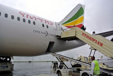 Ethiopia, Djibouti May Swap Stakes in Airlines, Ports