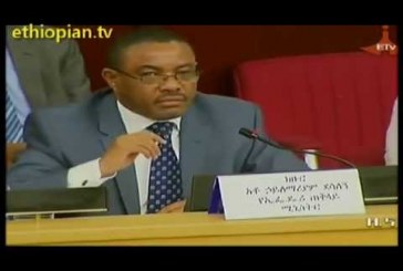 Prime Minister Hailemariam Desalegn Holds Discussion With Investors