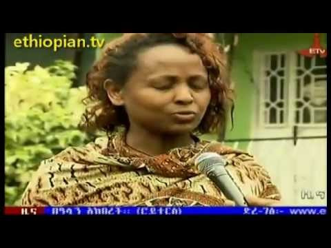 ETV News in Amharic - July 2, 2013
