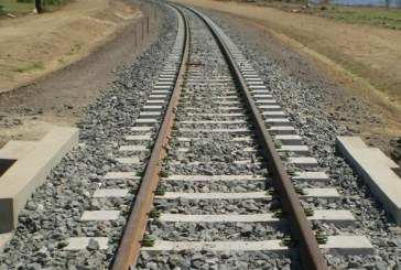 Ethiopia to Djibouti Railway to Be Complete on October 2015, PM Says