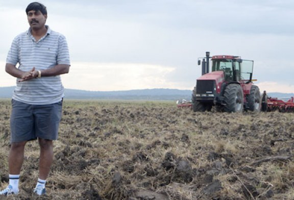 Karuturi Challenges Ethiopian Decision to Cancel Farming Project