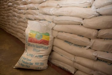 Ethiopia: More than 5.6 million in desperate need of food