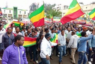 198 Ways to Fight the T-TPLF's State of Emergency in Ethiopia and Win
