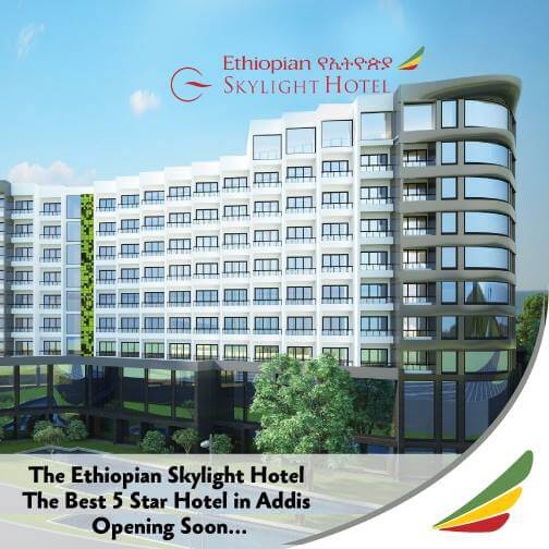 Ethiopia Could Sell Airline Skylight Hotel, Airports in Investor Hunt