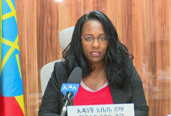 Ethiopia launches probe into alleged rights violations