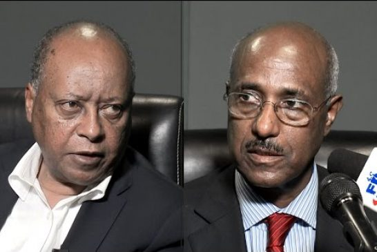 Comment on Ethiopia Says Seyoum Mesfin Killed by Military After Refusing to Surrender by Ittu Aba Farda